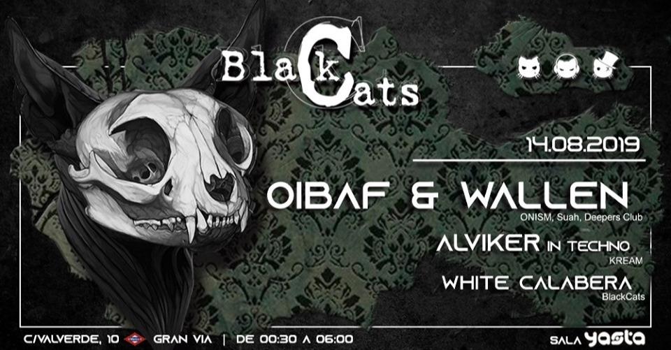 BLACKCATS CON OIBAF & WALLEN, ALVIKER, WHITE CALABERA 14/08 BLACK CATS