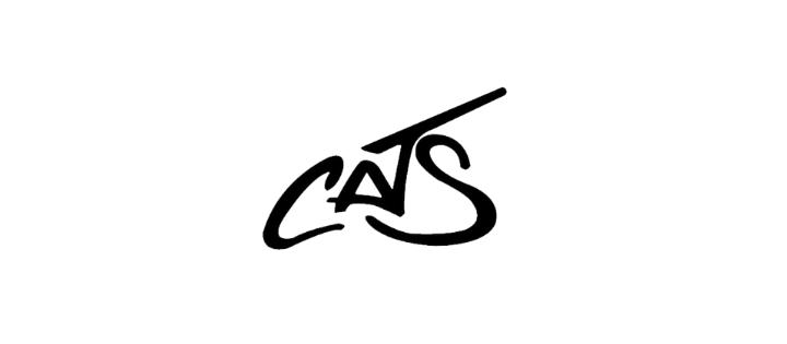 VIERNES DE CARNAVAL DISCOTECA CATS MADRID CATS